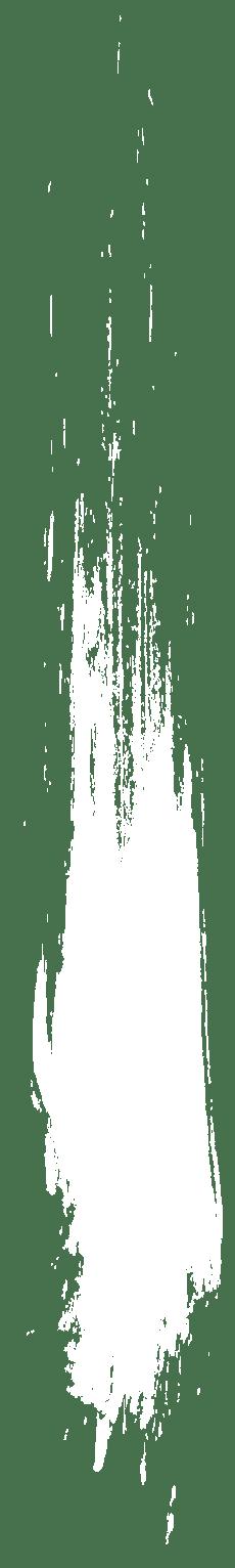 Erekcijos sutrikimai