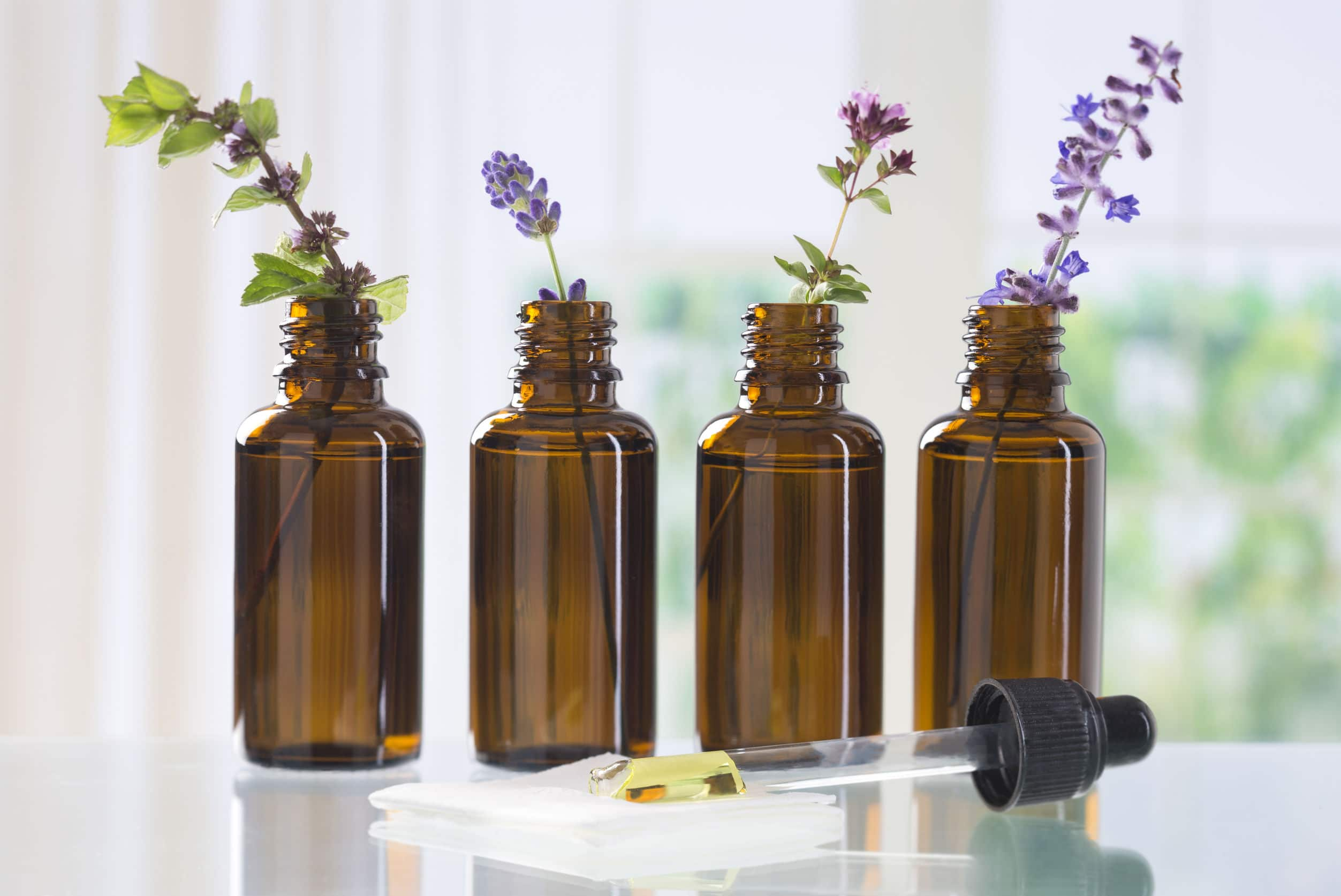 aromatic herbs for essential oil